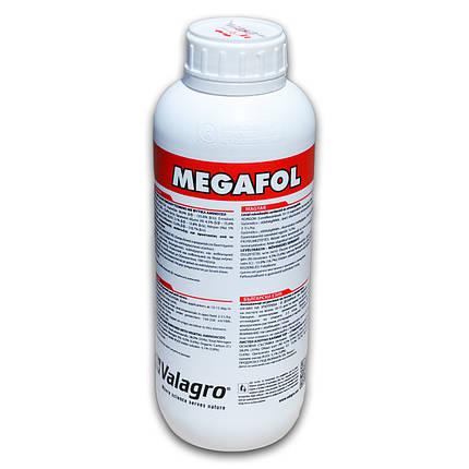 Биостимулятор роста Megafol (МЕГАФОЛ) Valagro - 1 л, фото 2