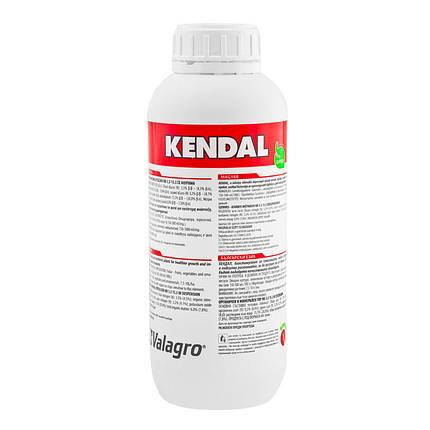 Биостимулятор роста Kendal (КЕНДАЛ), Valagro - 1 л, фото 2