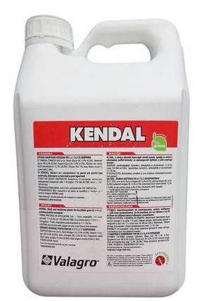 Биостимулятор роста Kendal (КЕНДАЛ), Valagro - 5 л, фото 2
