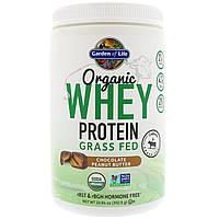 Garden of Life, Органический сывороточный протеин из молока коров, выращенных на подножном корме, шоколадное арахисовое масло, 13,84 унции (392,5 г)