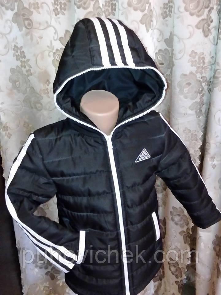 Модная детская курточка для мальчика весенняя