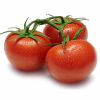 Семена томата Корал F1, Lark Seeds 250 грамм