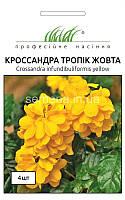 Кроссандра Тропік жовта 4 шт