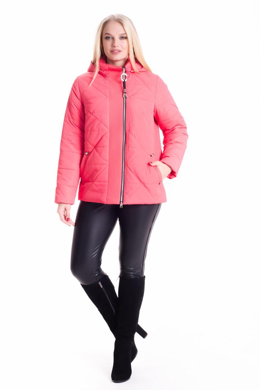 Короткая демисезонная женская куртка с капюшоном до 66 размера