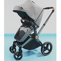 Детская коляска Welldon 2 в 1 (графитовый) WD007