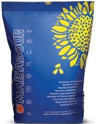 Семена подсолнечника Mas 93 CP Cruiser