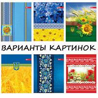 Тетрадь А5  обложка цветная мелованный картон 48 лист