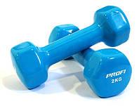 Гантель 2 кг Profi M 0290 с виниловым покрытием