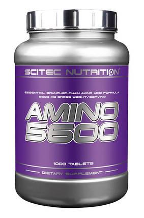 Аминокислота Scitec Nutrition Amino 5600 1000 таблеток, фото 2