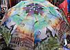 Зонт женский полуавтомат ( спицы на карбоне  ), фото 5