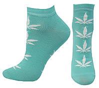 Женские демисезонные носки оптом , фото 1