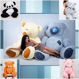 Мягкие игрушки Teddy