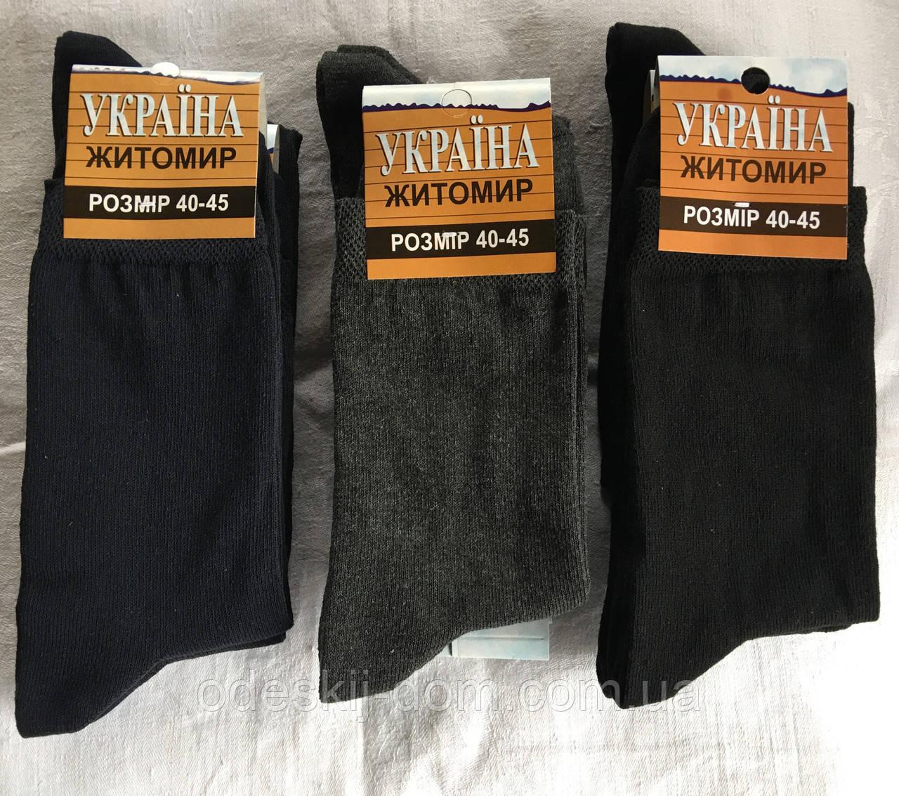 Житомир носки стрейчевые Украина