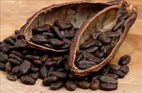 Какао бобы сырые 0,5 кг