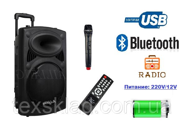 Акумуляторная колонка с микрофоном AIL-F14K-DT 150W (FM/USB/Bluetooth)