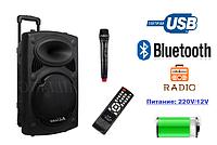Акумуляторная колонка с микрофоном AIL-F14K-DT 150W (FM/USB/Bluetooth), фото 1