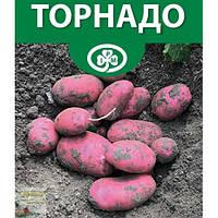 Картопля насіннєва Торнадо, class E, джутовий мішок 25 кг (рс)