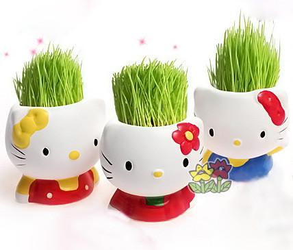 Травянчик Hello Kitty