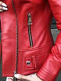 Красная кожанка про-во Турция, фото 10