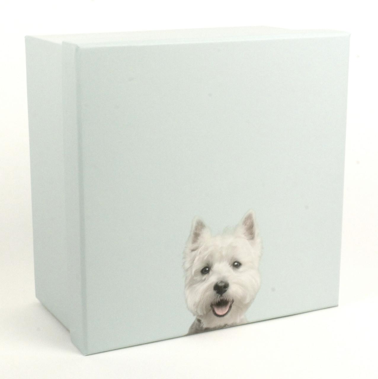 Подарочная коробка Best Friend 19 x 19 x 10.5 см