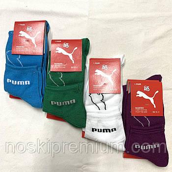 Носки женские демисезонные спортивные х/б Puma DS, цветное ассорти, средние, 10003