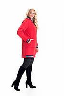 Модные женские куртки весна осень размеры 42-56