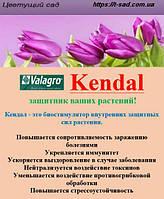 Биостимулятор Kendal   защитник ваших растений!  250мл