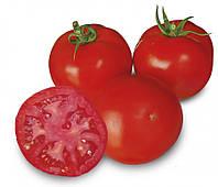 Семена томата 1609 F1, Lark Seeds 250 семян | профессиональные