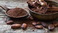 Линия для переработки какао бобов 1000 кг/ч