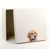 Подарочная коробка Good Boy 17 x 17 x 9 см
