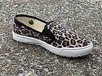 Мокасины женские на резинке леопард Литма