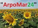 """Магазин сельхозтехники """"АгроМаг24"""""""