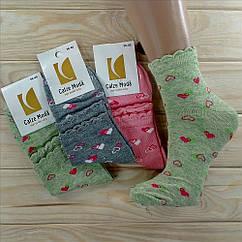 Женские носки ароматизированные демисезонные Calze Moda Турция хлопок  36-40р с рисунком  НЖД-021129