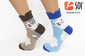 Шкарпетки спортивні жіночі SOI 23-25 р. (36-40) * 632, фото 2
