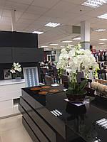 Декор для дома и офиса, орхидея 75-80 см