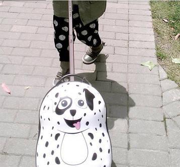 Дорожная сумка PIESEK, фото 2