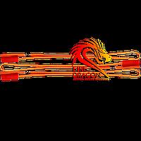Электровоспламенитель (электрозапал), длина провода: 30 сантиметров