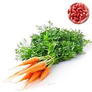 Дражоване насіння моркви