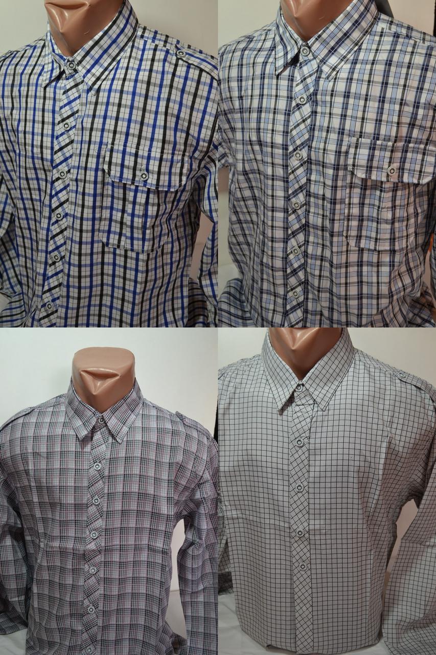 616e970756e Мужские приталенные рубашки в клетку EMT в ассортименте - Интернет-магазин