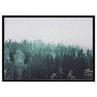 IKEA BJORKSTA (292.474.97) Картина с рамкой, верхушками деревьев, серебром