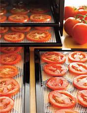 Сушилка для овощей и фруктов EXCALIBUR 4948CDFB, фото 2