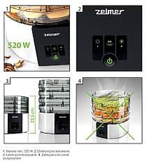 Сушарка для овочів та фруктів ZELMER FD1001, фото 2