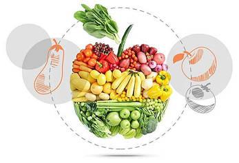 Сушилка для овощей и фруктов BIOCHEF 8, фото 2