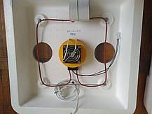 """Инкубатор с автопереворотом яиц """"Веселое семейство 2 ВПТ"""", фото 3"""