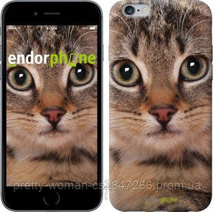 "Чехол на iPhone 6 Plus Полосатый котик ""2978c-48-19414"""