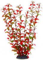 Акваріумне рослина Aquatic Plants №3410, 34 див.