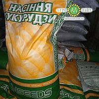 Семена кукурудзи Даниил ФАО 280