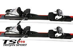 Лыжи FISCHER RTM 73 XTD 166 см, фото 3