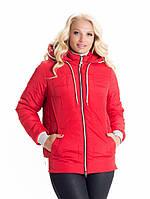 Женская весенняя куртка  удлиненная    42-58 красный
