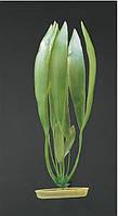Акваріумне рослина Hagen Marina AquaScaper Amazon Sword Plant, 20 см